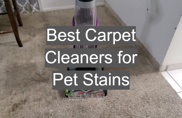 5 Best Carpet Cleaners for Pet Stains
